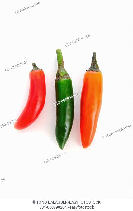 mexican chili serrano isolated on white green red orange