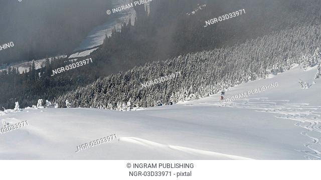 Ski resort, Whistler, British Columbia, Canada