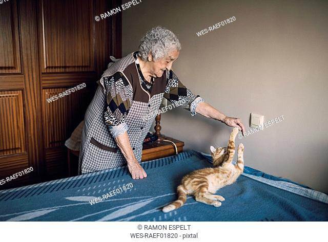 Senior woman playing with her cat at home