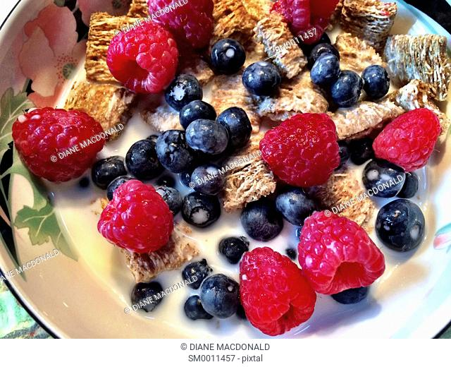 A bowl of whole grain cereal squares with raspberries and blueberries