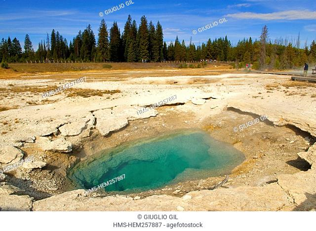 United States, Wyoming, Yellowstone National Park, listed as World Heritage by UNESCO, West Thumb Geyser Basin