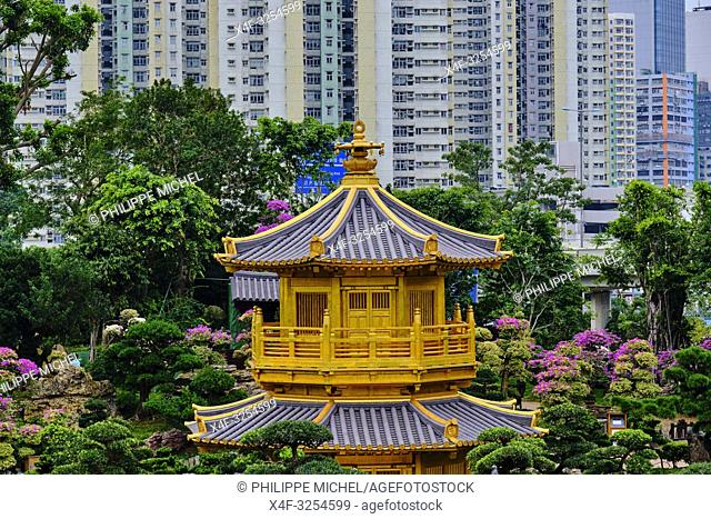 Chine, Hong Kong, Kowloon, jardin de Nan Lian et nonnerie de Chi Lin / China, Hong Kong, Kowloon, The pagoda at the Chi Lin Nunnery and Nan Lian Garden