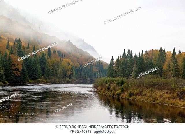 river and autumnal forest with fog, Jacques-Cartier National Park, province Quebec, Canada