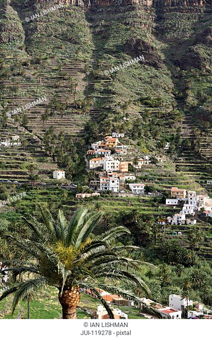 Mountainside village with palm trees, La Gomera, Canary Islands