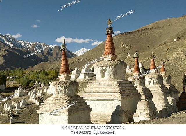 stupas ou shorten au pied du palais de Stok,ladakh,jammu et kashmir,inde,asie