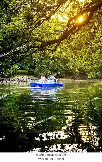 Rear view of friends pedal boating on channel against trees