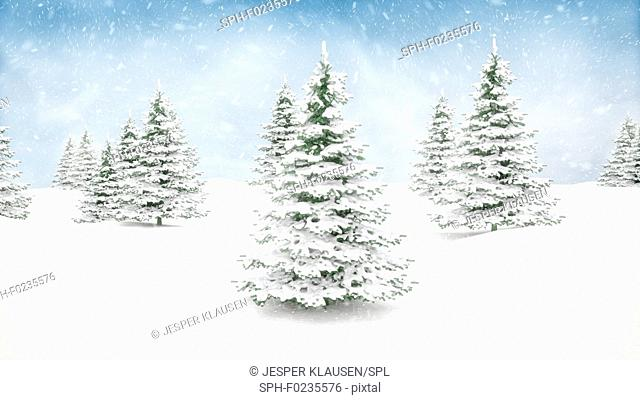Christmas winter landscape, illustration