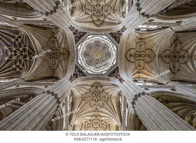 Crucero de la catedral, Catedral de la Asunción de la Virgen, Salamanca, comunidad autónoma de Castilla y León, Spain
