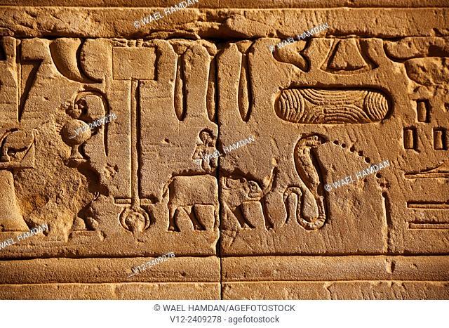 Relief, Medinet Habu temple, Luxor, Egypt