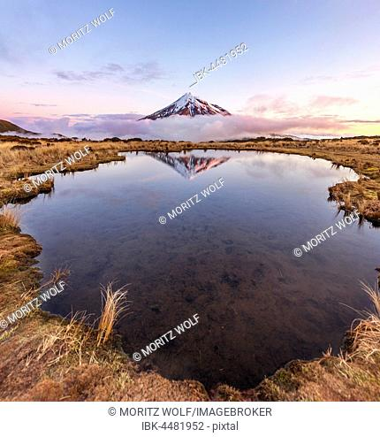 Reflection in Pouakai Tarn lake, pink clouds around stratovolcano Mount Taranaki or Mount Egmont at sunset, Egmont National Park, Taranaki, New Zealand