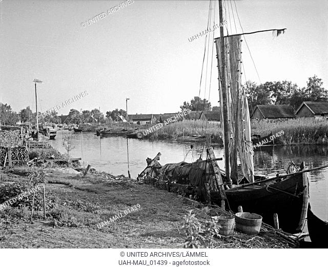 Am Fluß Inse im Memeldelta, Ostpreußen, 1930er Jahre. At the river Inse in the Memel delta, East Prussia, 1930s
