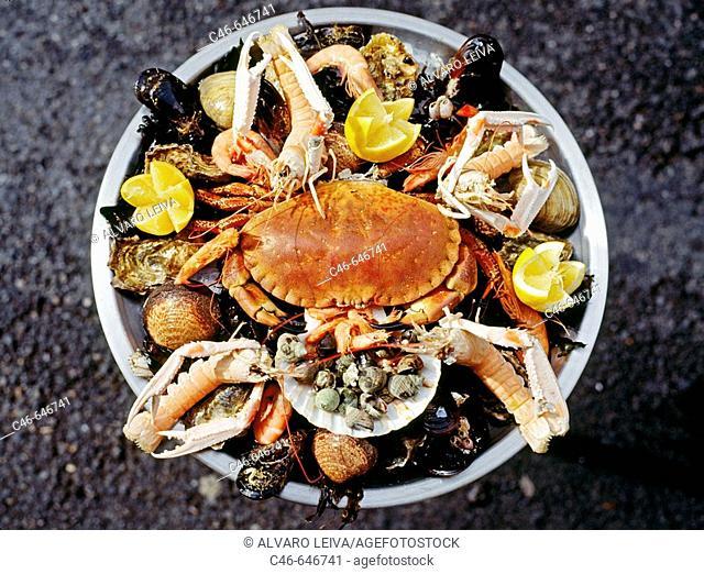 Seafood. Biarritz. Pays Basque. Pyrénées Atlantiques . France