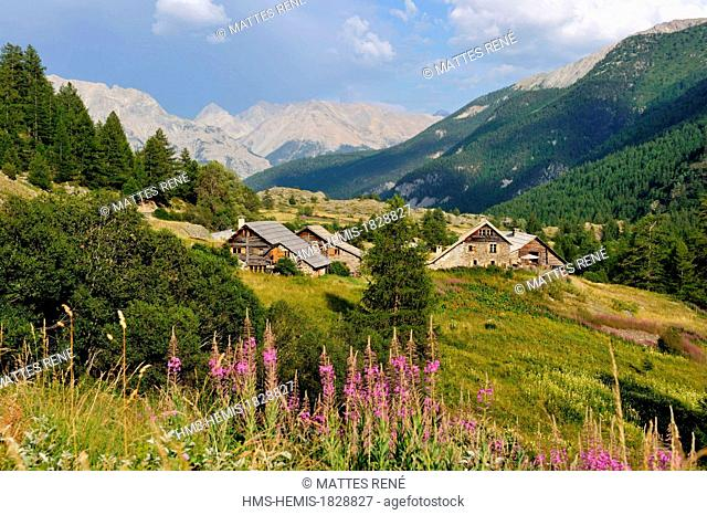 France, Hautes Alpes, Brianconnais area, Valley of La Claree