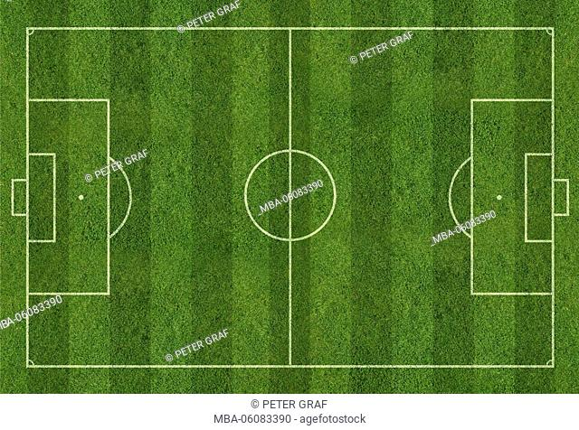 International football field with turf and lines, plan from above