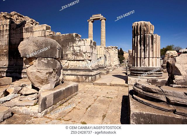 Temple of Apollo at the Archeological area of Didim, Didyma, Aydin Province, Turkey, Europe
