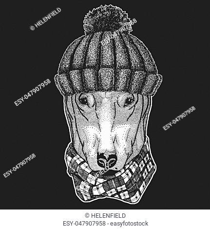 DOG for t-shirt design Hand drawn illustration for tattoo, emblem, badge, logo, patch