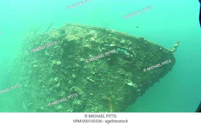 Coral on bow of Kasi Maru or Kashi Maru ship wreck. Mbaeroko Bay, near Munda, Solomon Islands, Melanesia