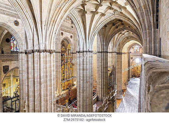 Pilares de la catedral Nueva de Salamanca. Ciudad Patrimonio de la Humanidad. Castilla León. España