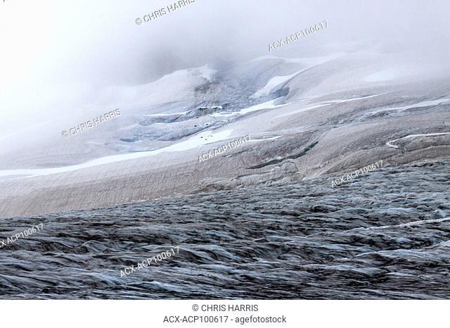 Canada, British Columbia, Chilcotin, Chilcotin Ark, Charlotte Alplands, Coast Mountains, Moonlight Glacier