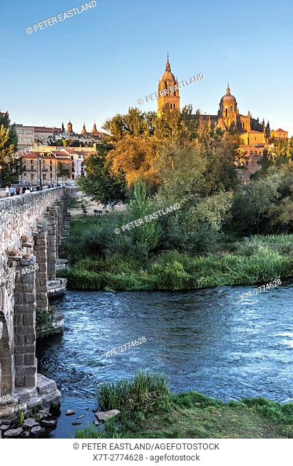 Salamanca Cathedral seen from across the River Tormes and the Puente Romano, Salamanca, Spain