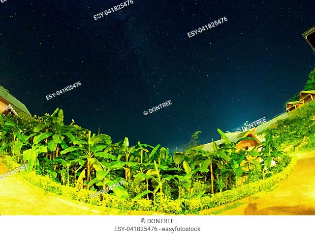 Night landscape, night starry sky with milky way
