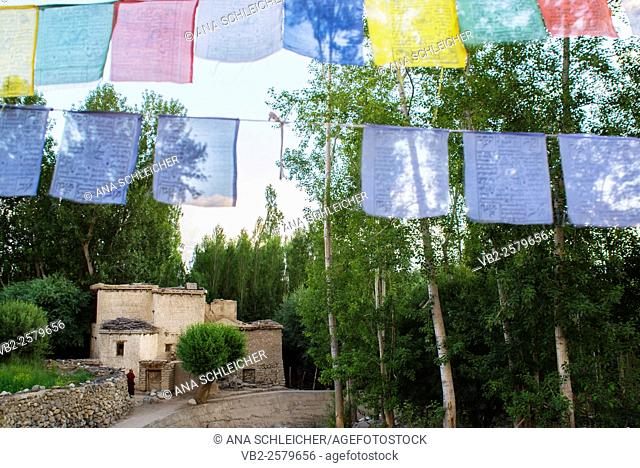 Coloured prayer flags in Leh blessing the surroundings and also hanged with wishes of long life and good fortune. A traditional mud-brick house and poplar trees...