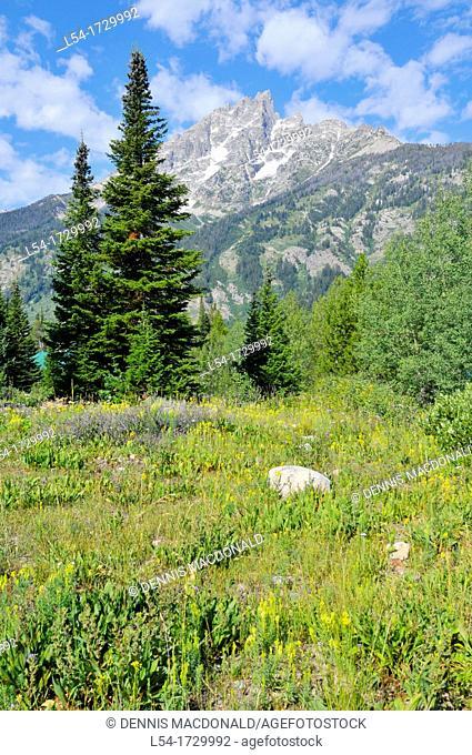 Prairie Grand Teton National Park Wyoming WY United States