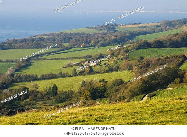 Coastal view with farmland, pasture, hedgerows and woodland, Ringstead, Dorset, England, october