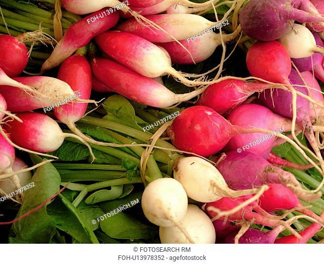 Montpelier, VT, Vermont, Farmer's Market, radishes