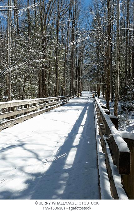 Greenbrier, Bridge, Snow, Great Smoky Mtns National Park