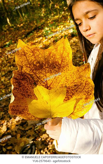 Little girl with leaves in hands in wood in autumn
