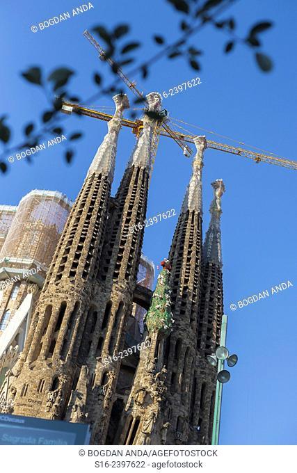Barcelona - Sagrada Familia towers and cranes