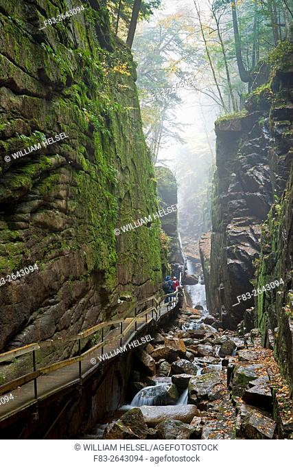 """""""""""The Flume"""" gorge, Franconia Notch State Park, New Hampshire, USA, boardwalk trail and creek, October"