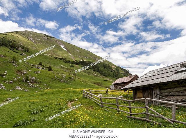 Hut in the Bärental