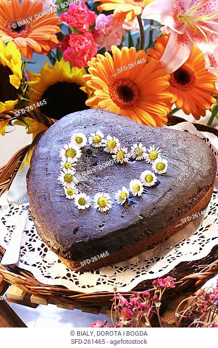 Heart-shaped chocolate cake with daisies