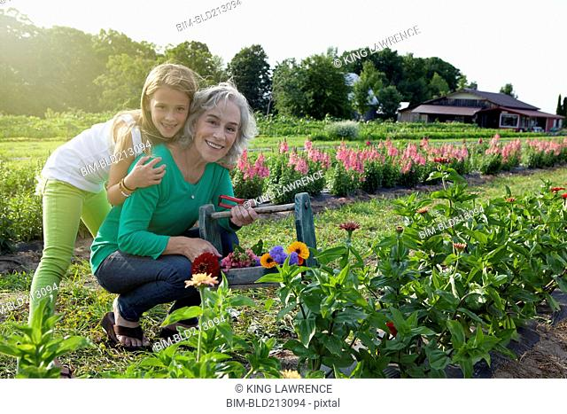 Caucasian grandmother and granddaughter picking flowers on farm