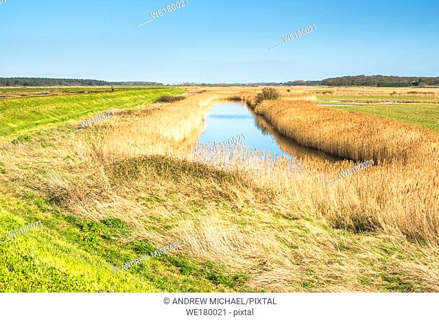 Views of salt marshes surrounded by reeds, from Norfolk Coast path National Trail near Burnham Overy Staithe, East Anglia, England, UK