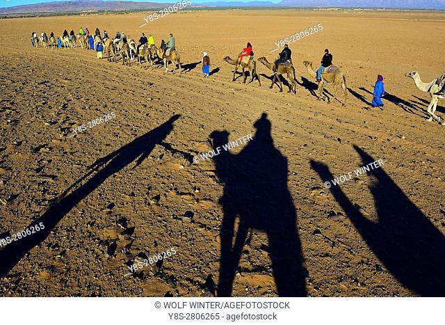 Tourism in the desert near Zagora, South of Morocco