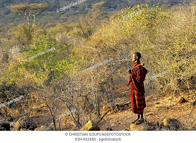 Maasai man in the bush, Kenya,East Africa