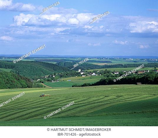 Rural landscape, Eifel region, Germany, Europe