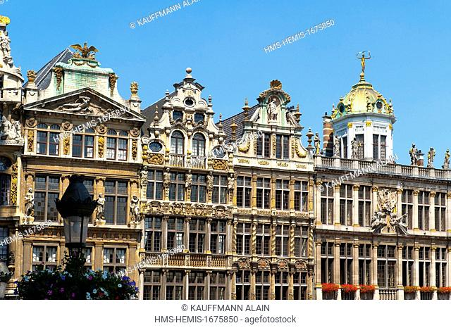 Belgium, Wallonia, Brussels, Grand Place is the central square of Brussels, internationally renowned for its rich ornamentation, it is bordered by guild houses