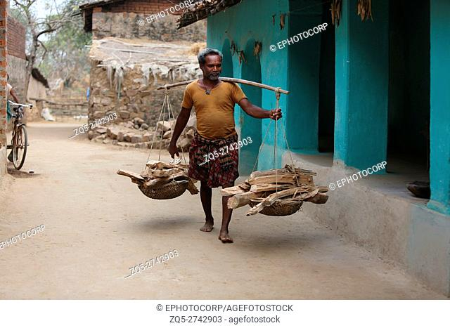 Tribal man carrying firewood, SAWAR TRIBE, Khairmal Village, Saraipali Tahsil, Mahasamund District, Chattisgarh, India