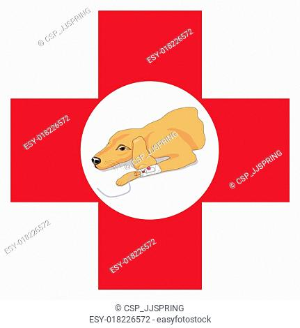 Veterinary red cross with a dog