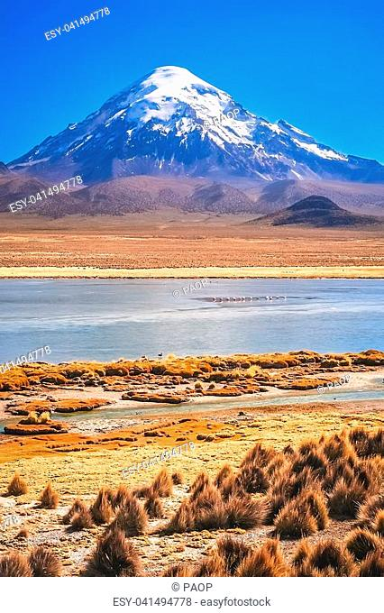 Enormous snowcapped Nevado Sajama volcano in the National Park, Bolivia