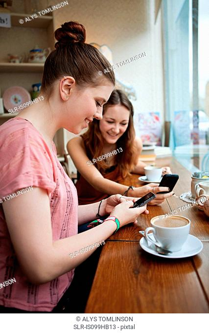 Young women in cafe using cell phones