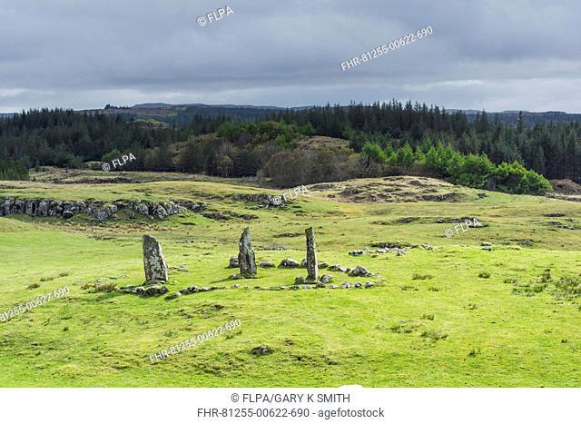 View of standing stones, Glengorm Standing Stones, Glengorm Estate, Isle of Mull, Inner Hebrides, Scotland, May
