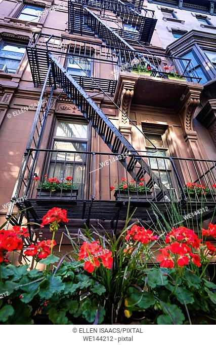 Red geraniums in a flower box brighten the front of a brownstone building with fire escape in Brooklyn Heights