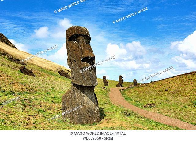 Chile, Easter Island, Rapa Nui, moai heads on the crater slopes of  Rano Raraku