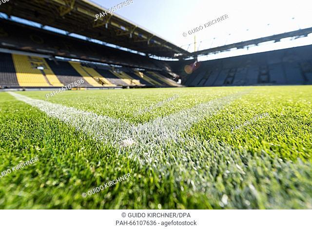 The pitch at the Signal-Iduna-Park stadium in Dortmund, Germany, 17 February 2016. PHOTO: GUIDO KIRCHNER/DPA | usage worldwide