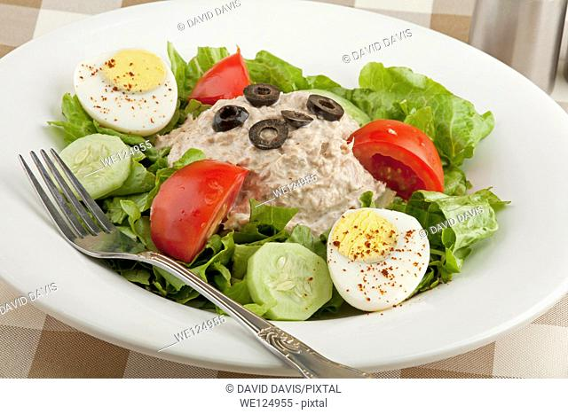 Tuna salad with vegetables and a hard boiled egg